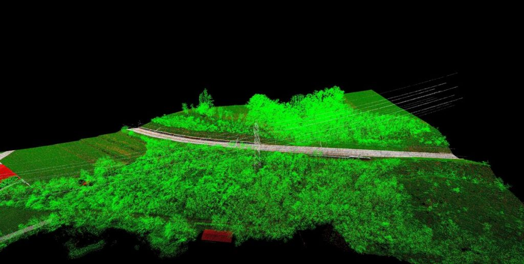 lidar forestry management and planning